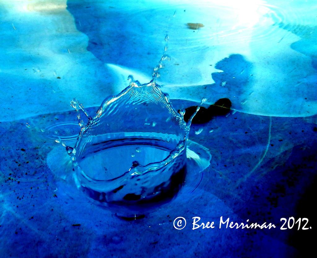 Making A Splash II by BreeSpawn