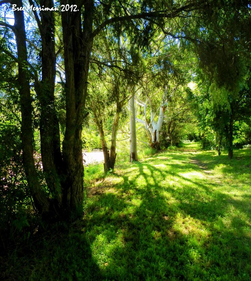 Pathways III by BreeSpawn
