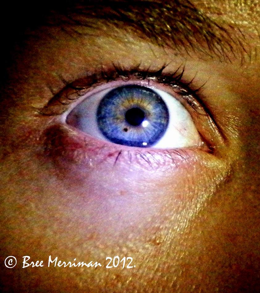 Macro Eye II by BreeSpawn