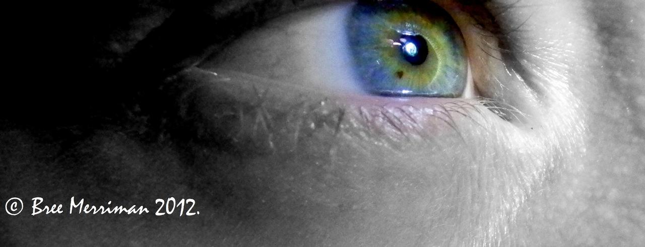 Macro Eye IV by BreeSpawn