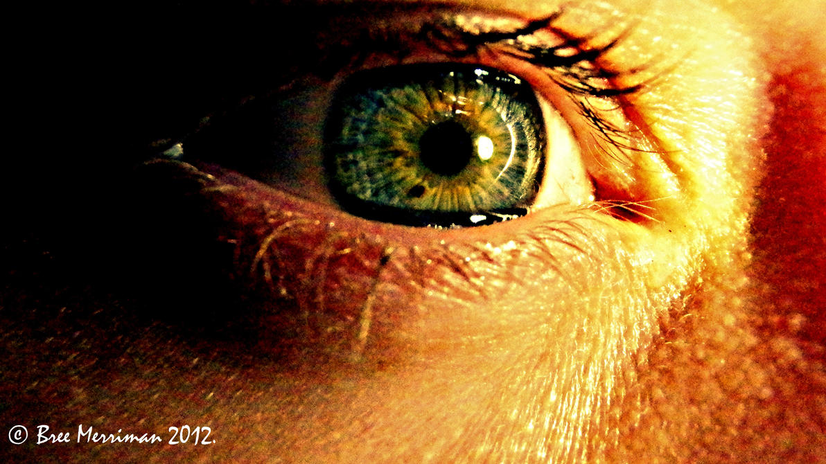 Macro Eye V by BreeSpawn