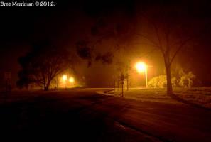 Night Time Lights II by BreeSpawn