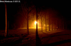 Night Time Lights III by BreeSpawn