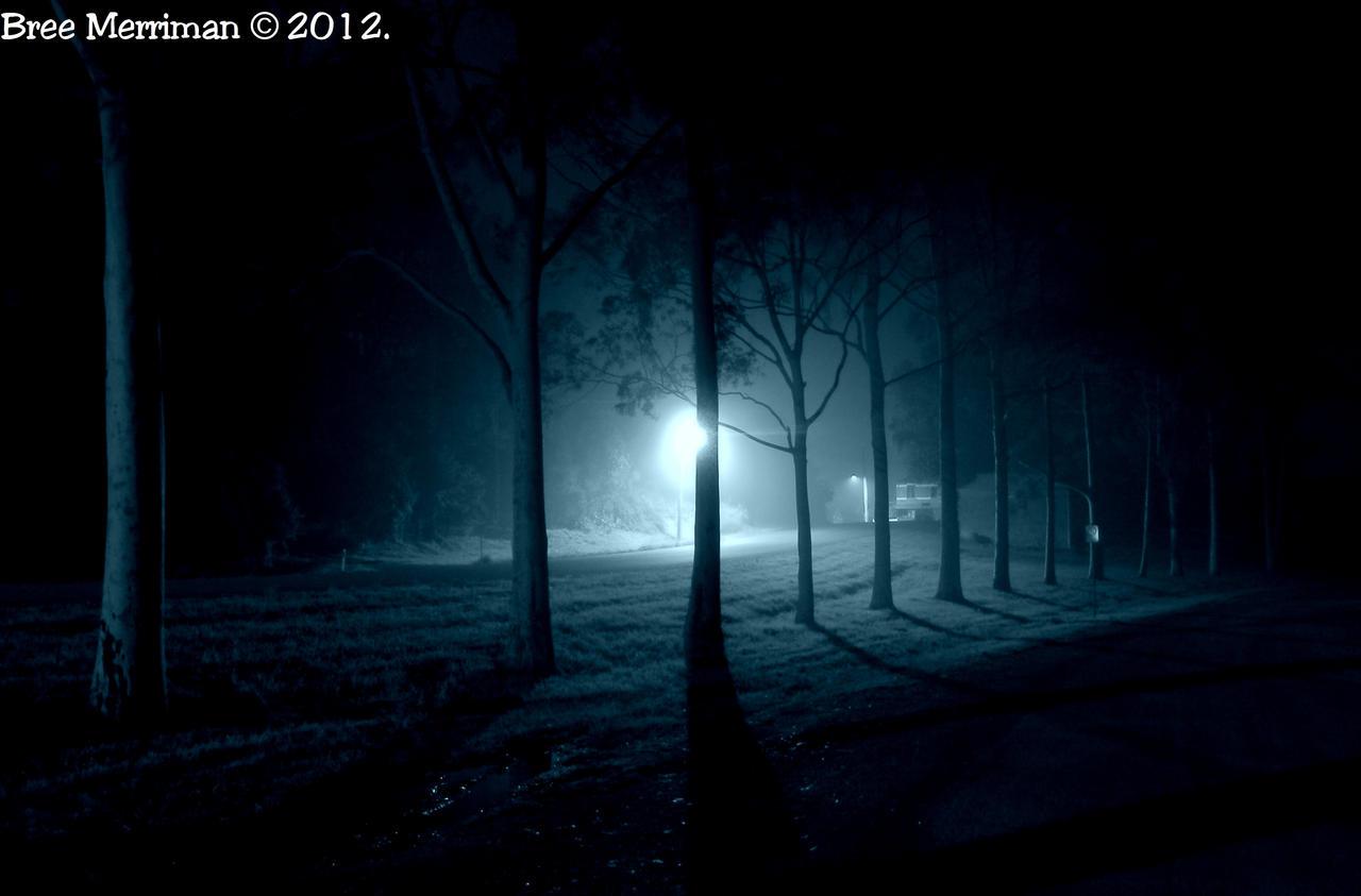 Night Time Lights IV by BreeSpawn