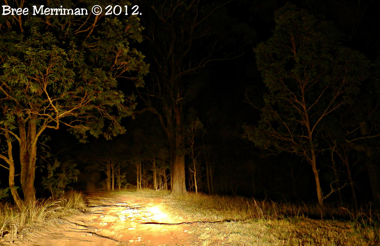 Night Drive I by BreeSpawn
