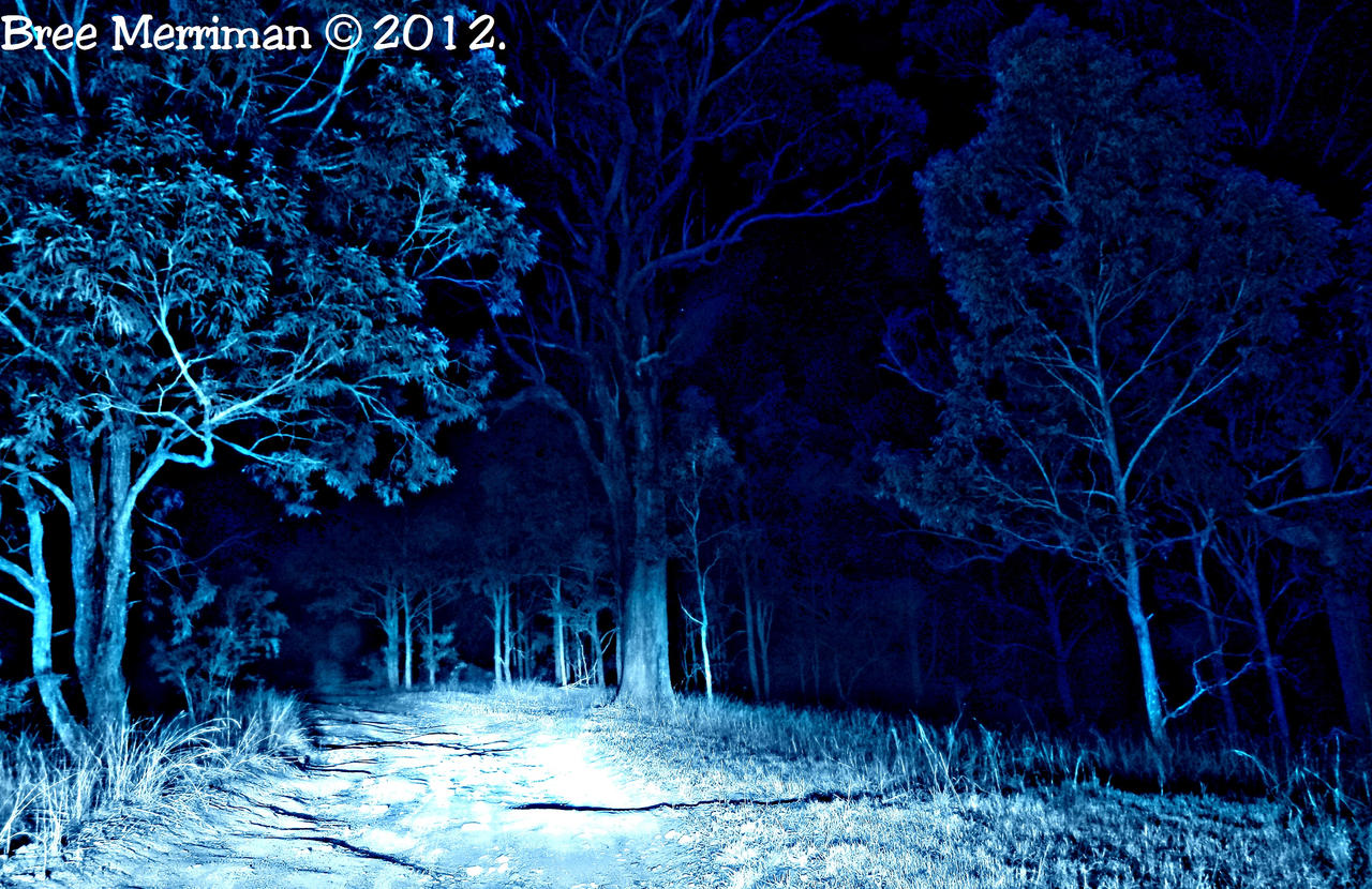 Night Drive II by BreeSpawn
