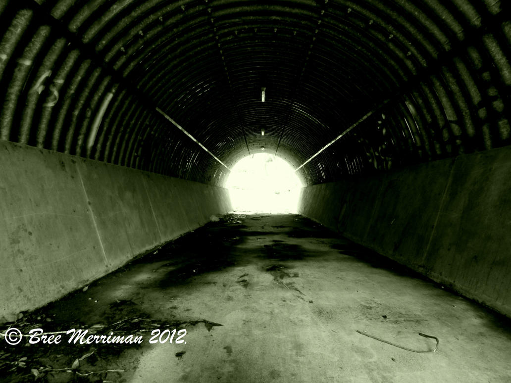 Light At The End Of The Tunnel by BreeSpawn