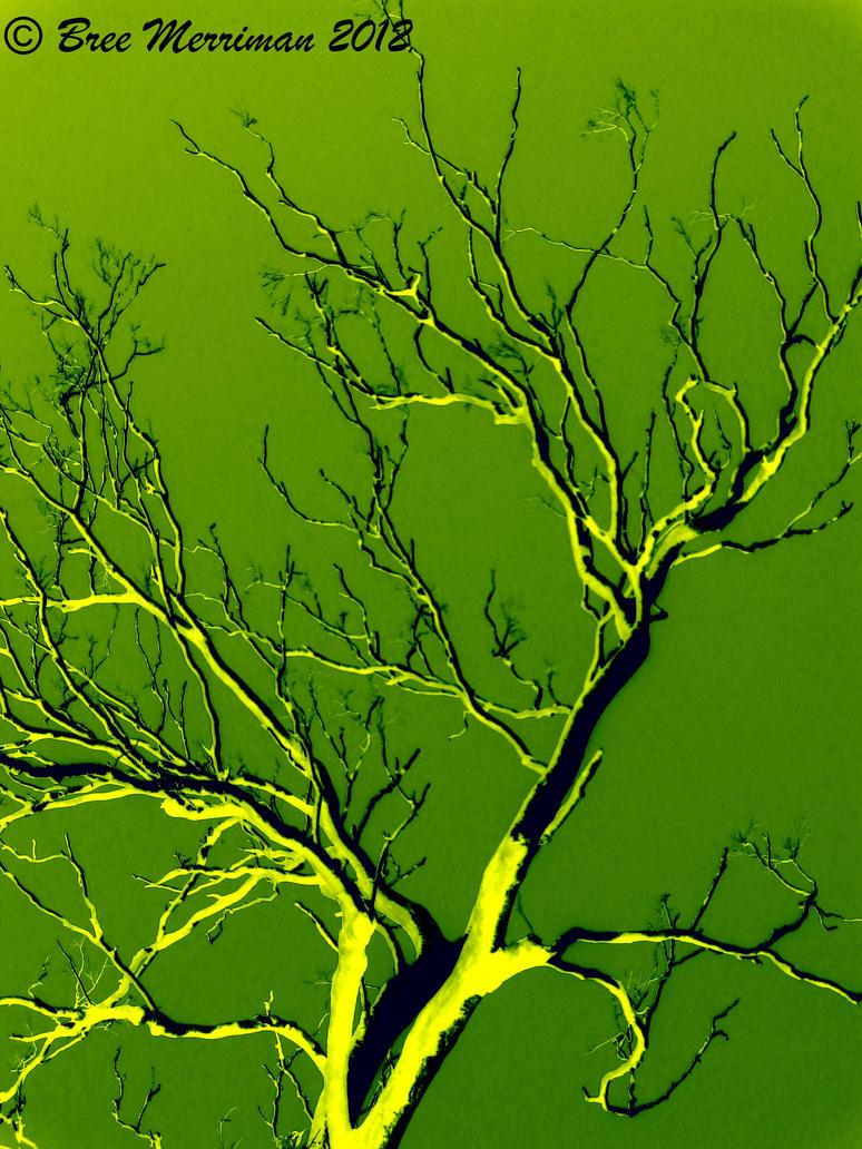 Tree II by BreeSpawn