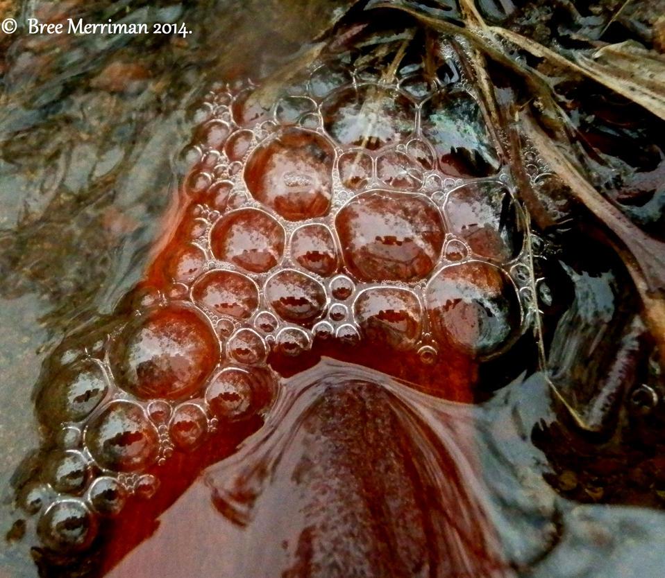 Bubble Mash V by BreeSpawn