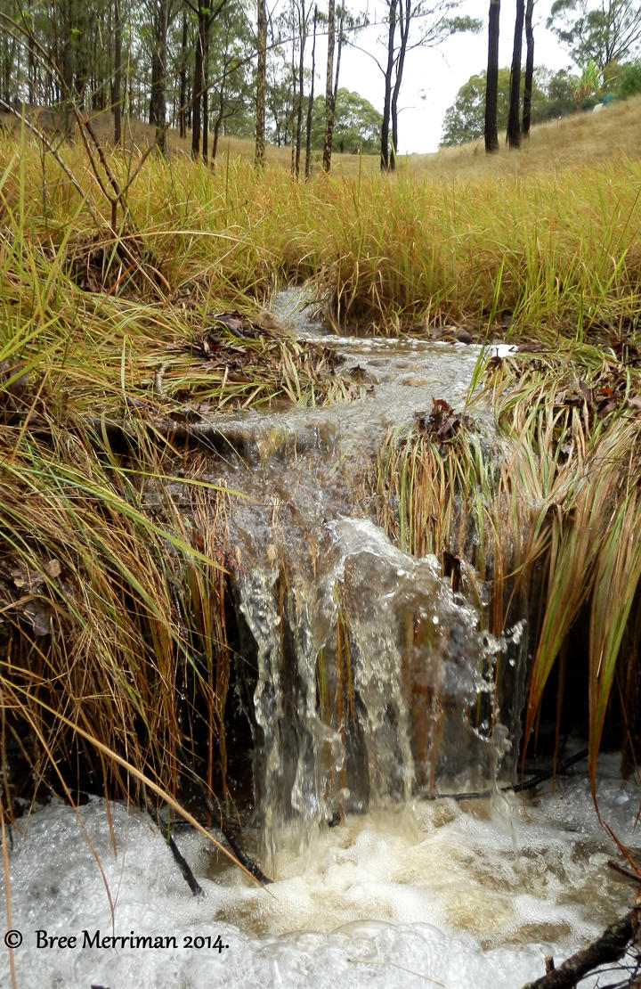 Miniature Waterfall III by BreeSpawn