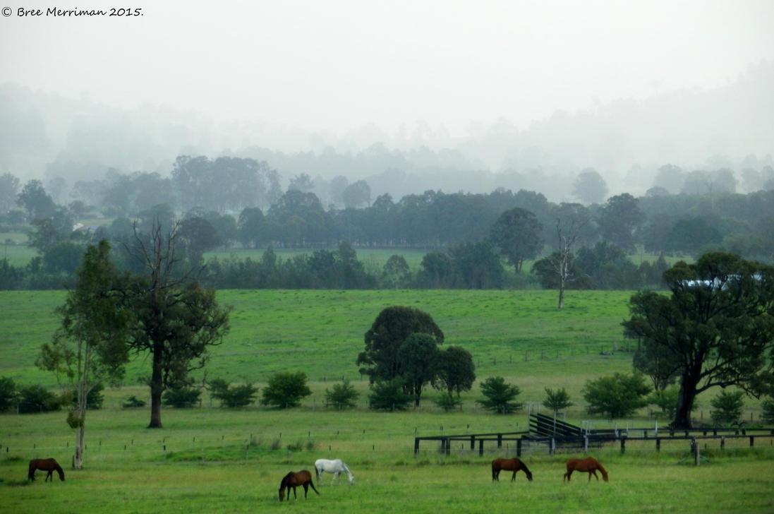 Torryburn Landscape I by BreeSpawn