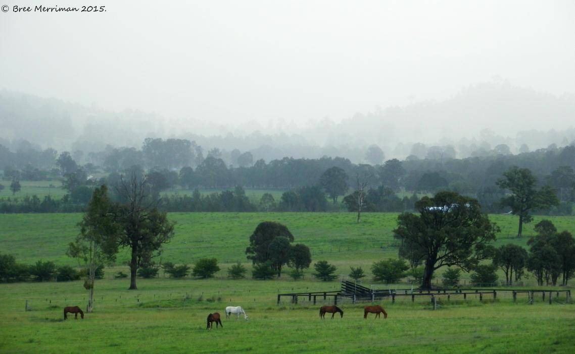 Torryburn Landscape II by BreeSpawn
