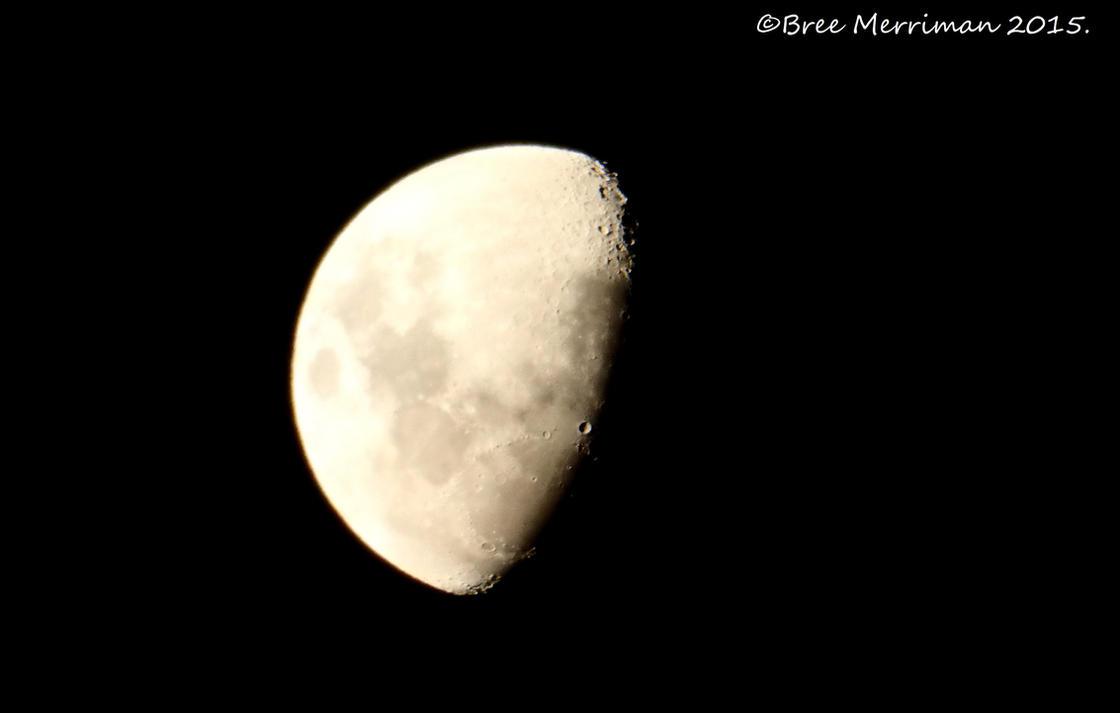 Southern Moon by BreeSpawn