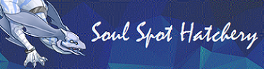 signature_banner_by_soul_of_sin-d9x8vvq.png