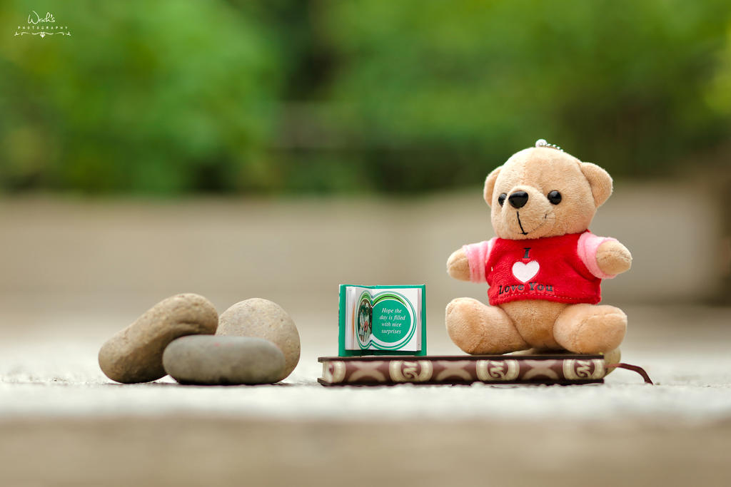 Teddy's Love by Koustubh-Dhar-Wrick