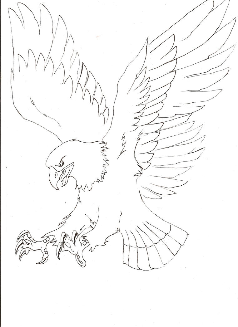 Line Drawing Eagle : Eagle line art by chaos br on deviantart