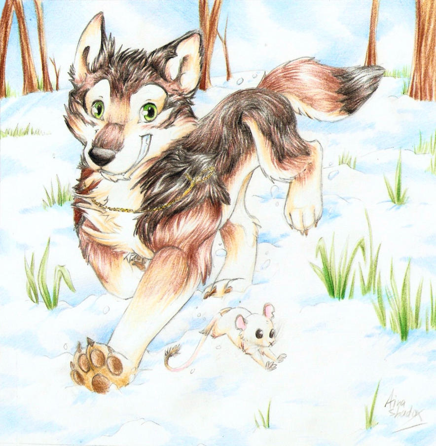 Winter-fun by SirKittenpaws