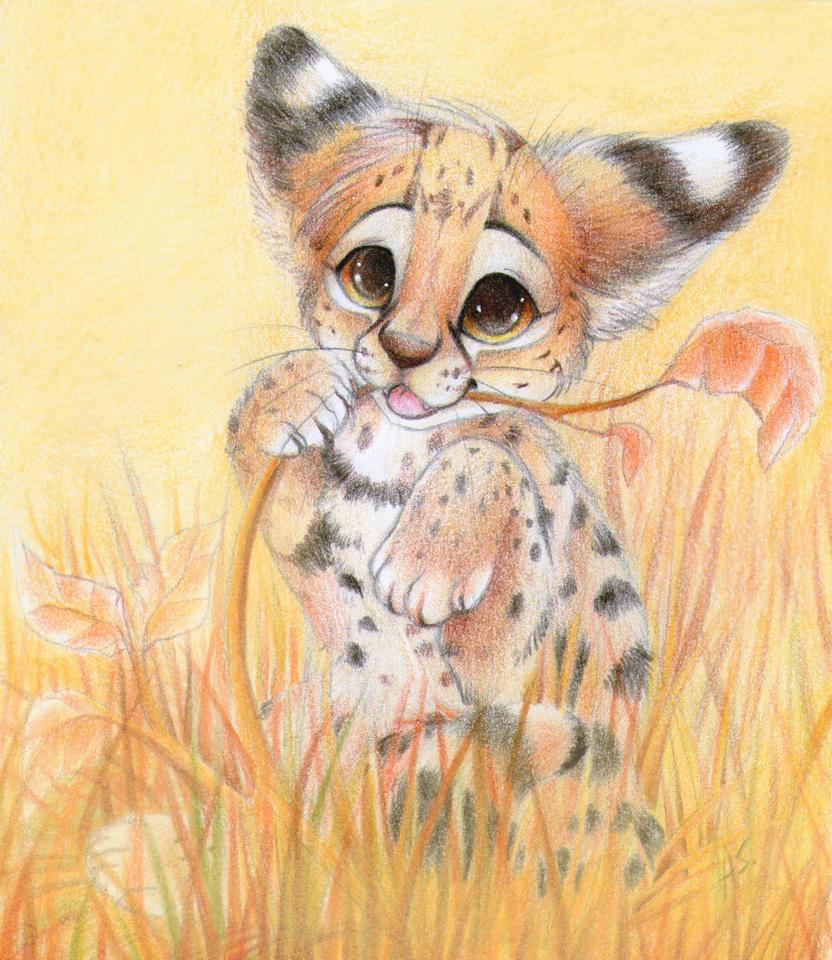 Serval cub by SirKittenpaws
