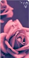 Rose Divider [F2U]