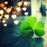 Lovely luck. ..