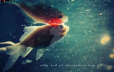 Dreamy.... by addy-ack