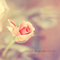 Soft colors... . by addy-ack