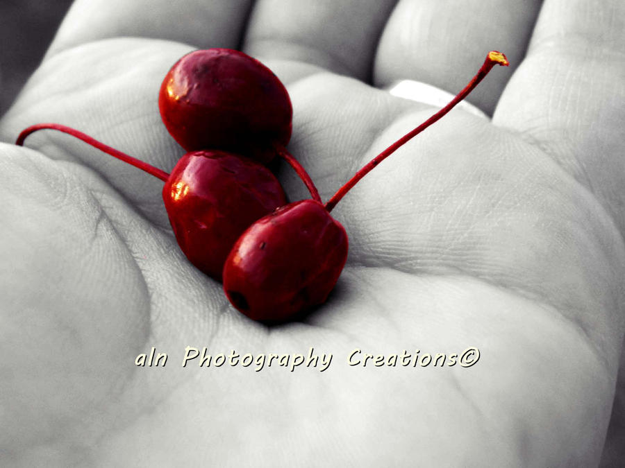 Hand full of cherries by ALNCreations