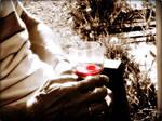 Dieter's wine by Burtn