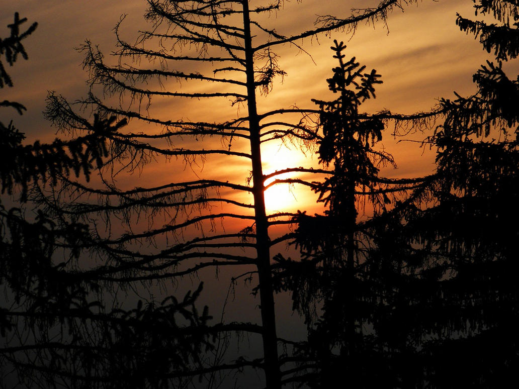 another sunset by Burtn