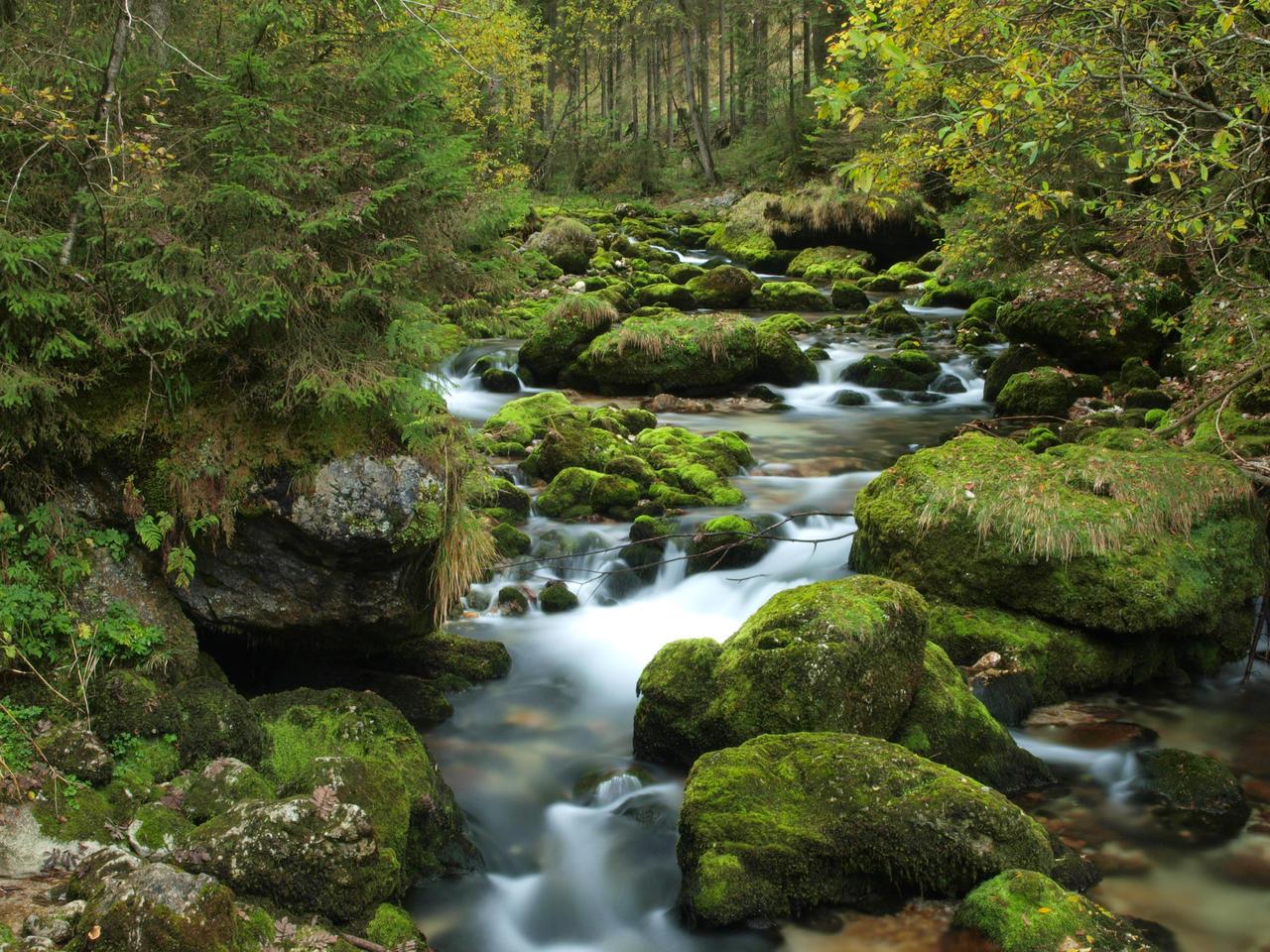 Whispering River by Burtn