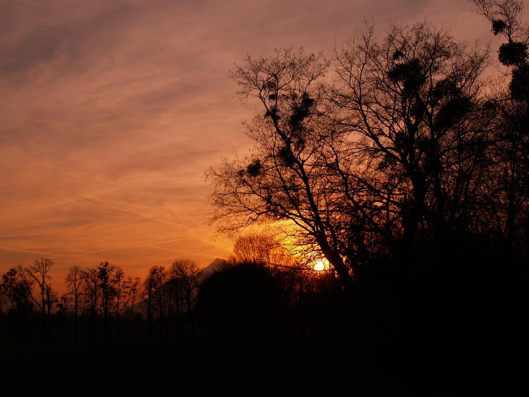 Evening by Burtn