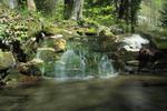 Splish Splash by Burtn