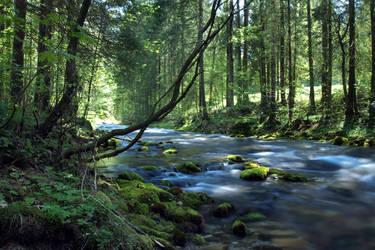 Follow The River 3rd - spring by Burtn