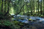Follow The River 3rd - spring