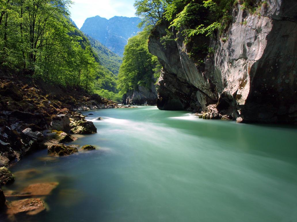 Green Stream by Burtn
