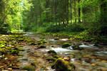 Follow The River 4th-Summer