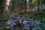 Follow The River 7th-Fantasy, big size by Burtn