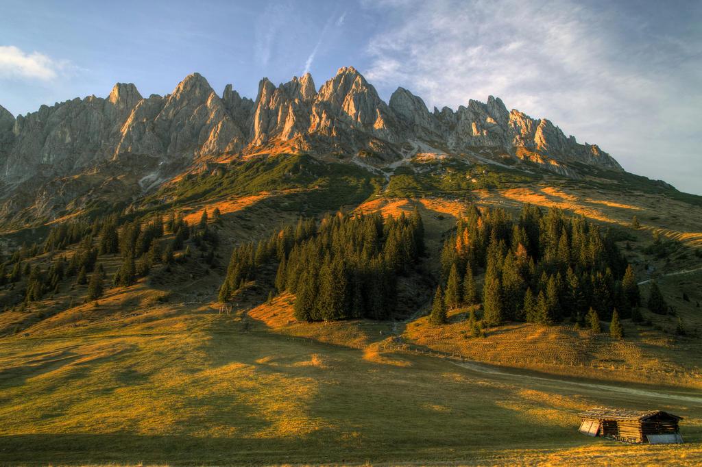 Pines And Peaks by Burtn