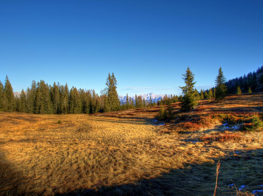 Sunny Autumn by Burtn