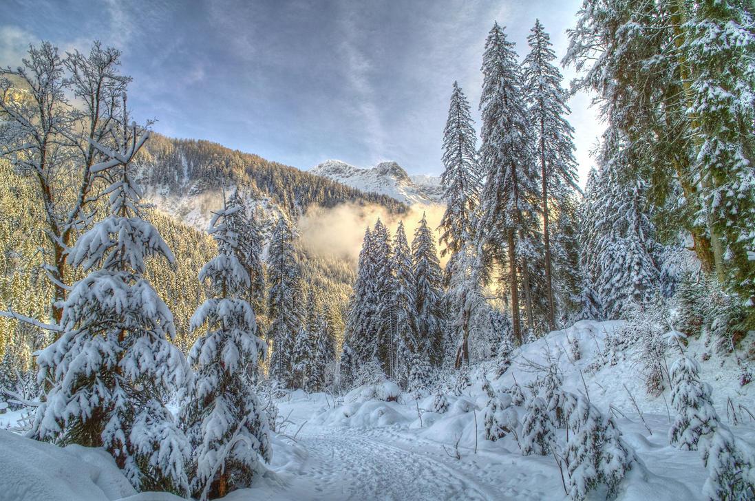 Winter Wonderland by Burtn
