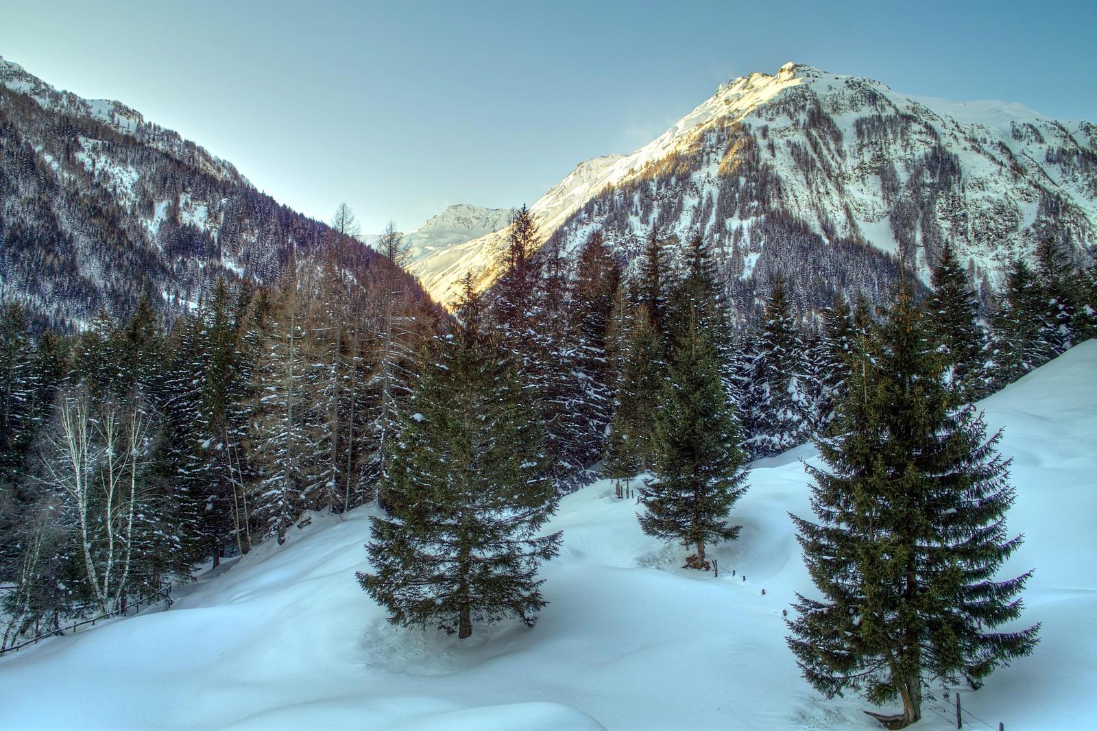 Silent Winter by Burtn