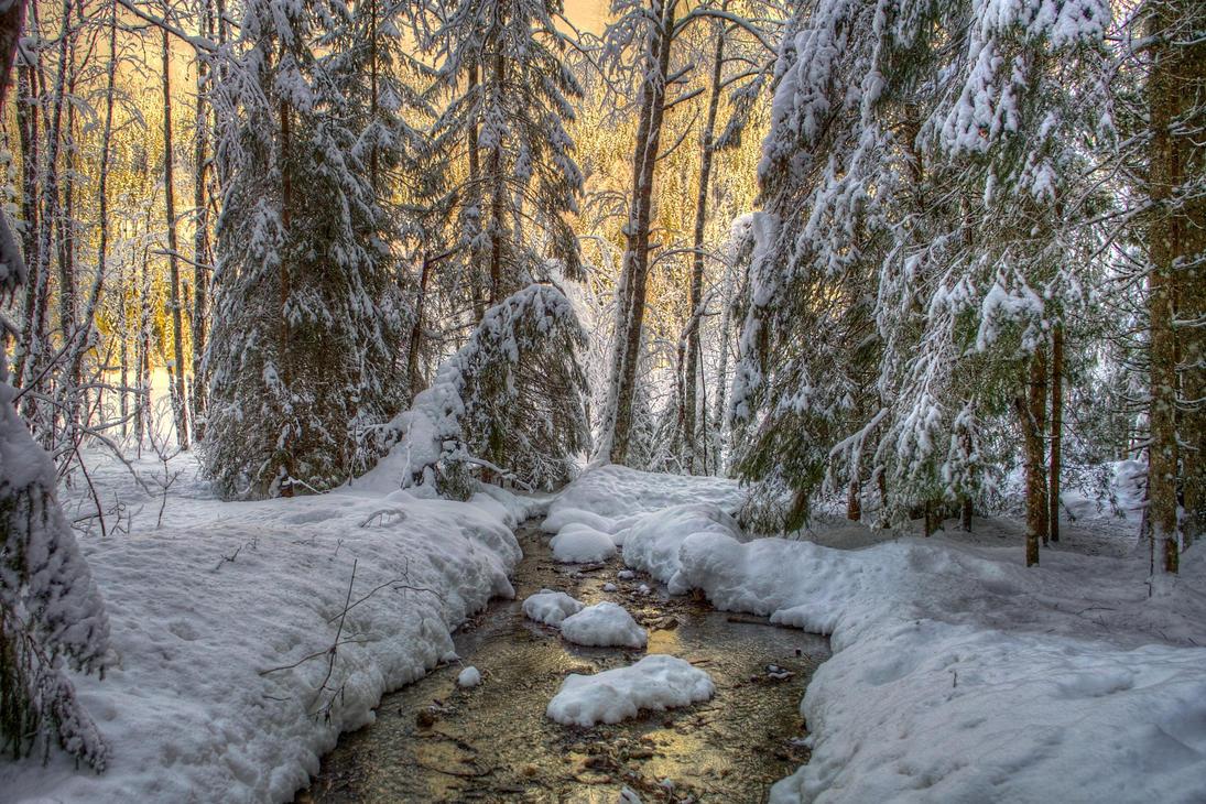 Winter Twilight by Burtn