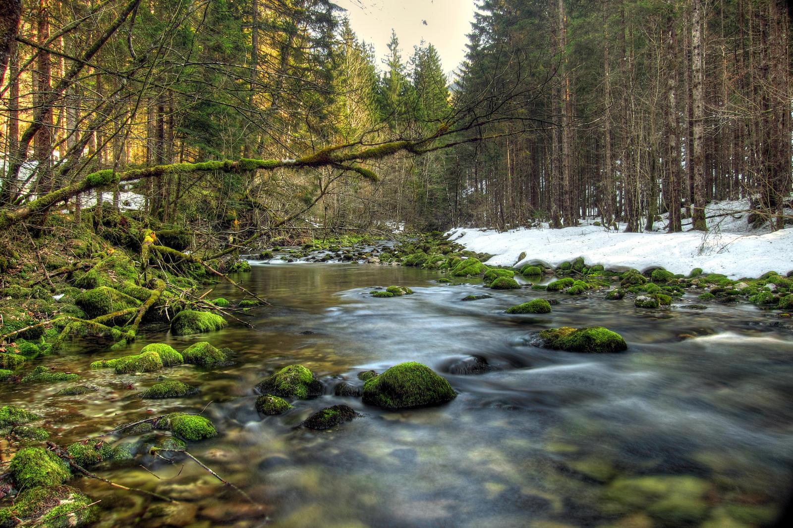 Goodbye Winter by Burtn