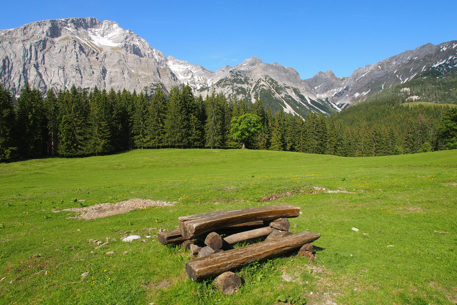 Meadow With Bench by Burtn