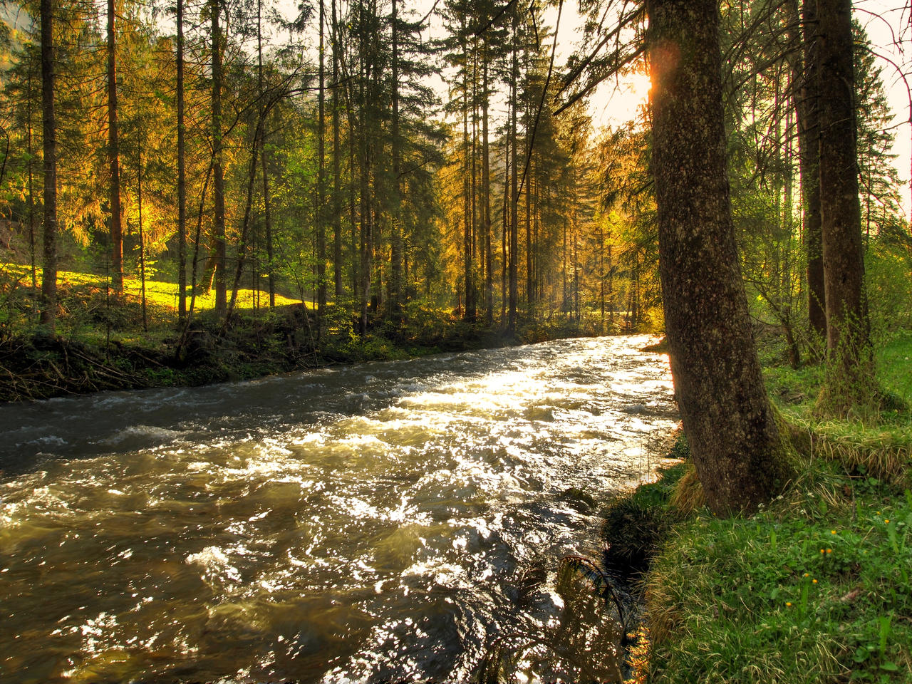 River Sunset by Burtn