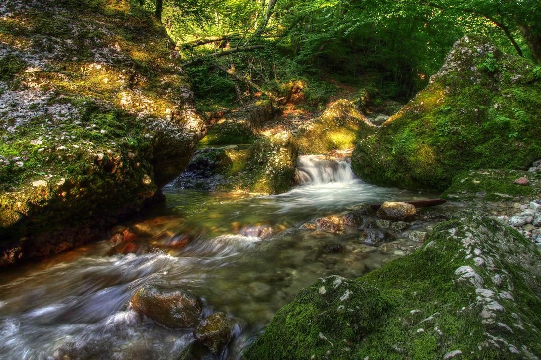Jungle River by Burtn