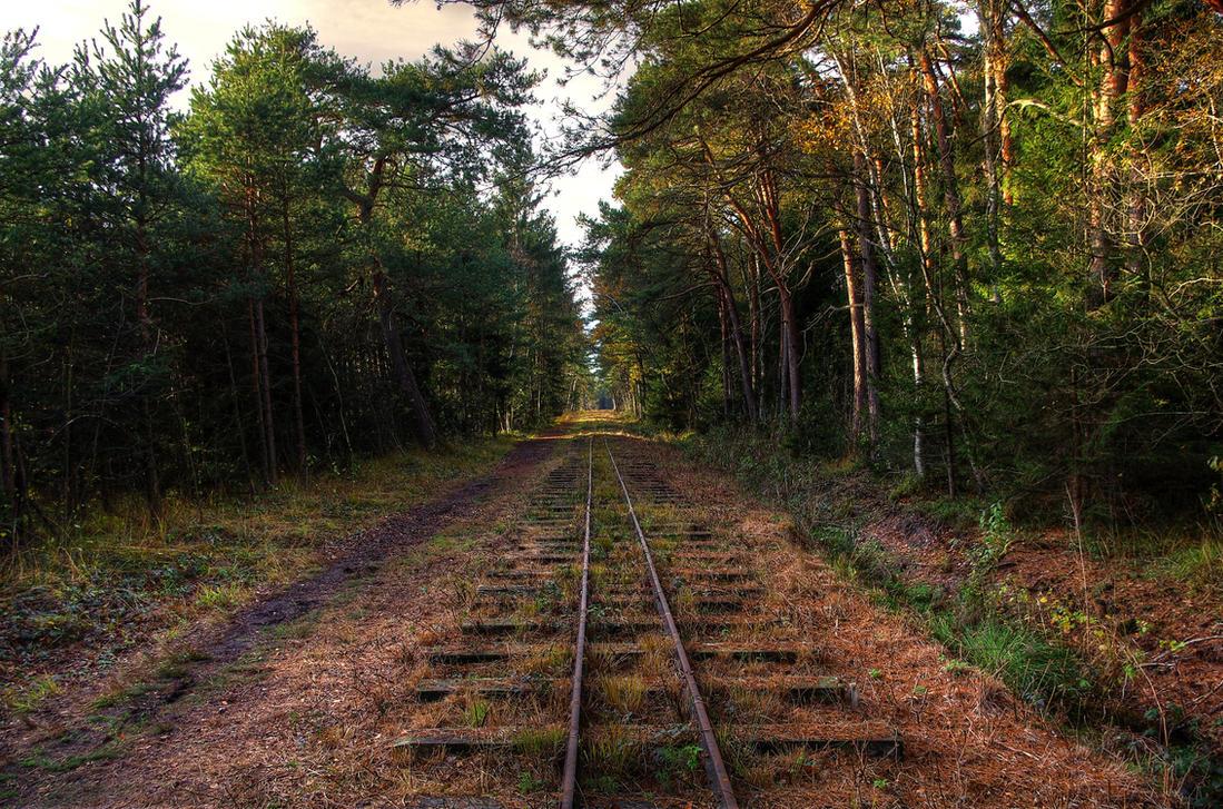 Old Rails by Burtn