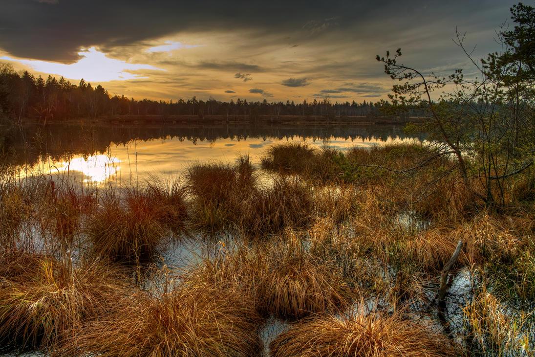 Moor Sunset by Burtn