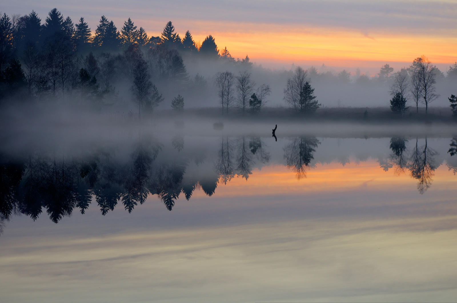 Misty Lake by Burtn