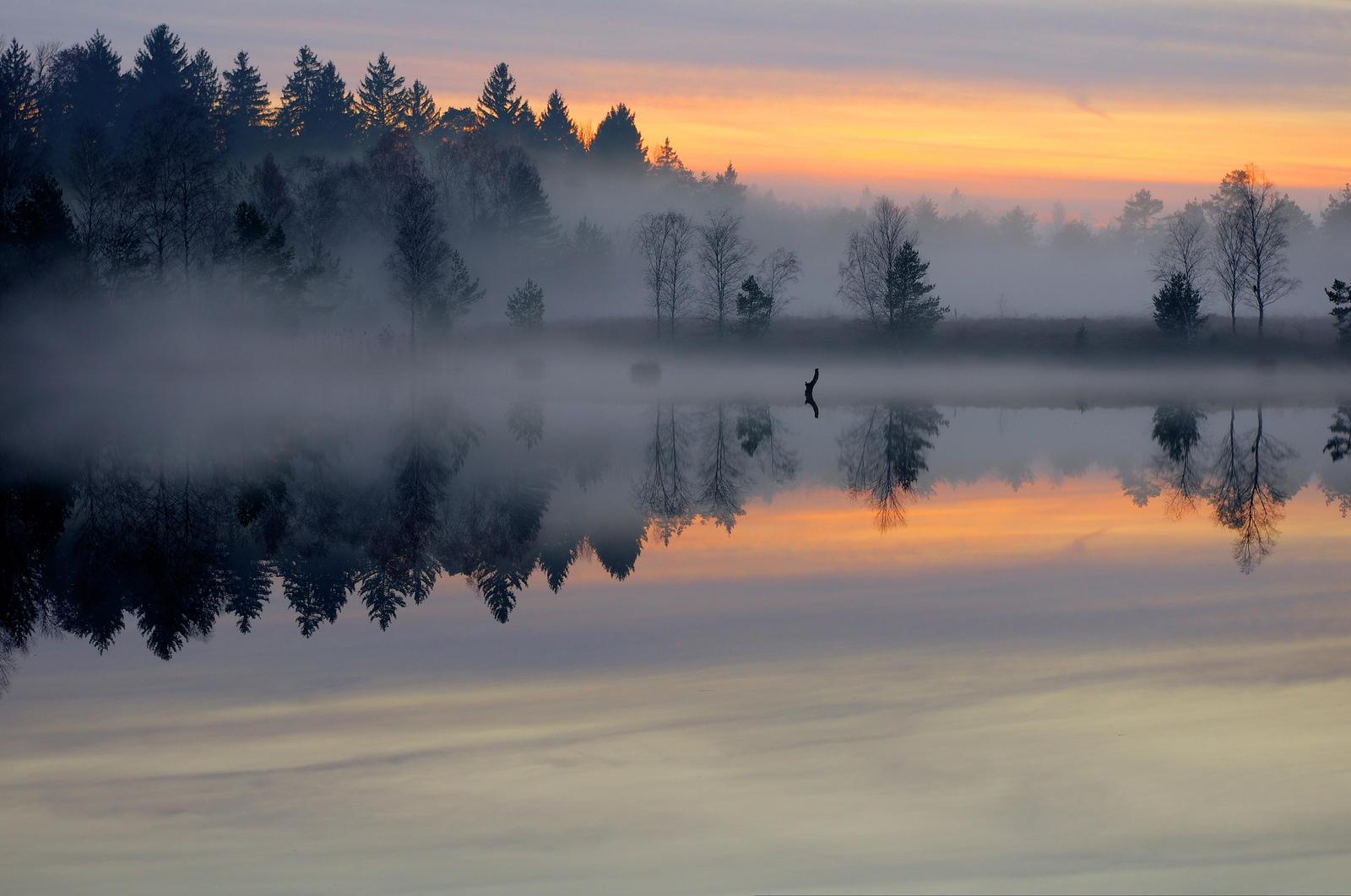 Misty Lake by Burtn
